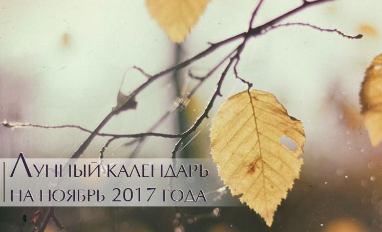 noyabr 2017